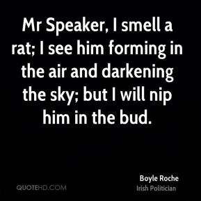Boyle Roche - Mr Speaker, I smell a rat; I see him forming in the air and darkening the sky; but I will nip him in the bud.