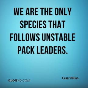 Cesar Millan - We are the only species that follows unstable pack leaders.