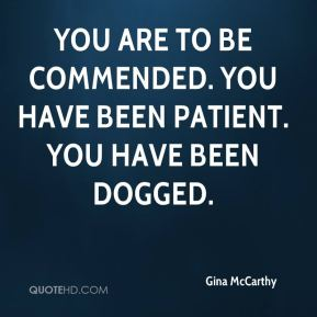 You are to be commended. You have been patient. You have been dogged.