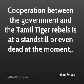 Cooperation between the government and the Tamil Tiger rebels is at a standstill or even dead at the moment.
