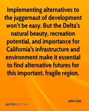 Implementing alternatives to the juggernaut of development won't be easy. But the Delta's natural beauty, recreation potential, and importance for California's infrastructure and environment make it essential to find alternative futures for this important, fragile region.