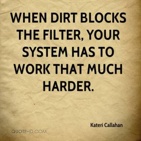 Kateri Callahan  - When dirt blocks the filter, your system has to work that much harder.