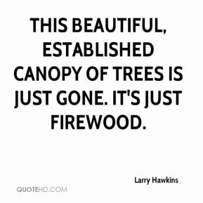 Larry Hawkins  - This beautiful, established canopy of trees is just gone. It's just firewood.
