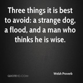 Welsh Proverb  - Three things it is best to avoid: a strange dog, a flood, and a man who thinks he is wise.