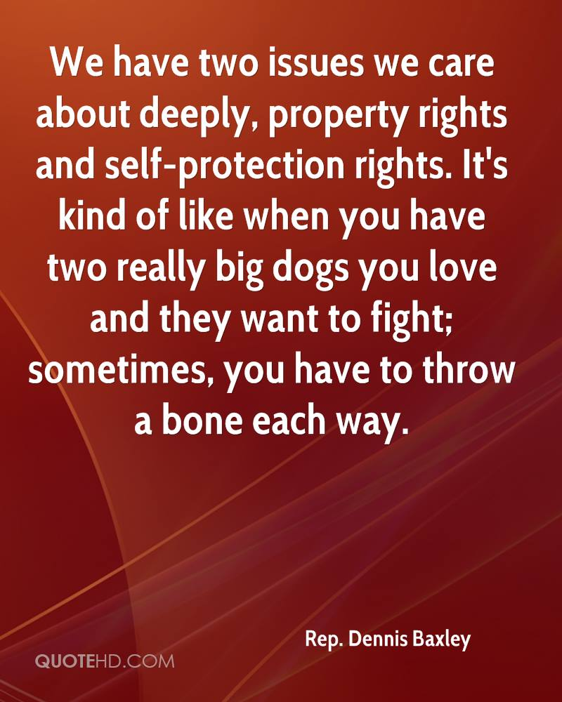 We have two issues we care about deeply, property rights and self-protection rights. It's kind of like when you have two really big dogs you love and they want to fight; sometimes, you have to throw a bone each way.