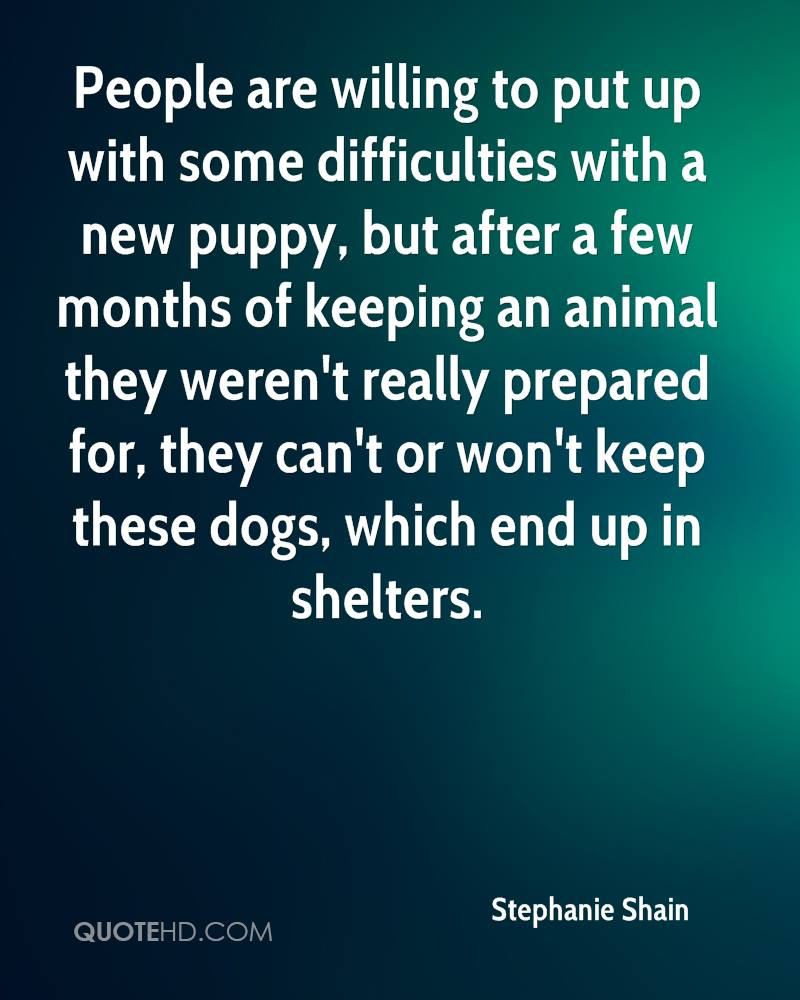 People are willing to put up with some difficulties with a new puppy, but after a few months of keeping an animal they weren't really prepared for, they can't or won't keep these dogs, which end up in shelters.