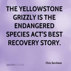 Chris Servheen - The Yellowstone grizzly is the Endangered Species Act's best recovery story.