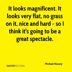 Michael Hussey  - It looks magnificent. It looks very flat, no grass on it, nice and hard - so I think it's going to be a great spectacle.