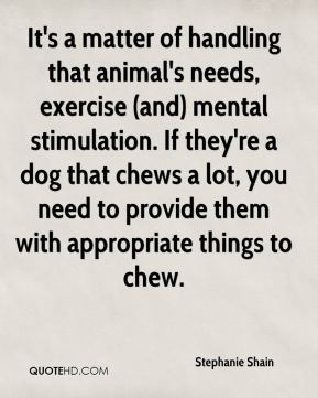 It's a matter of handling that animal's needs, exercise (and) mental stimulation. If they're a dog that chews a lot, you need to provide them with appropriate things to chew.