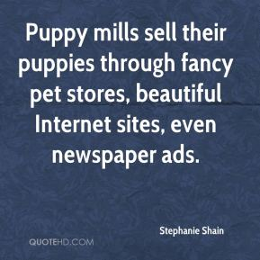 Stephanie Shain  - Puppy mills sell their puppies through fancy pet stores, beautiful Internet sites, even newspaper ads.