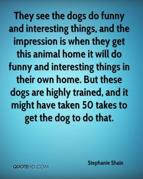 They see the dogs do funny and interesting things, and the impression is when they get this animal home it will do funny and interesting things in their own home. But these dogs are highly trained, and it might have taken 50 takes to get the dog to do that.