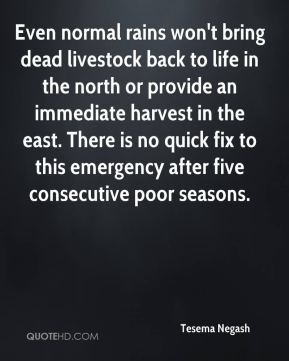 Even normal rains won't bring dead livestock back to life in the north or provide an immediate harvest in the east. There is no quick fix to this emergency after five consecutive poor seasons.