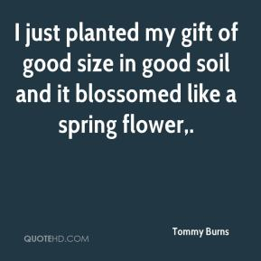 Tommy Burns  - I just planted my gift of good size in good soil and it blossomed like a spring flower.