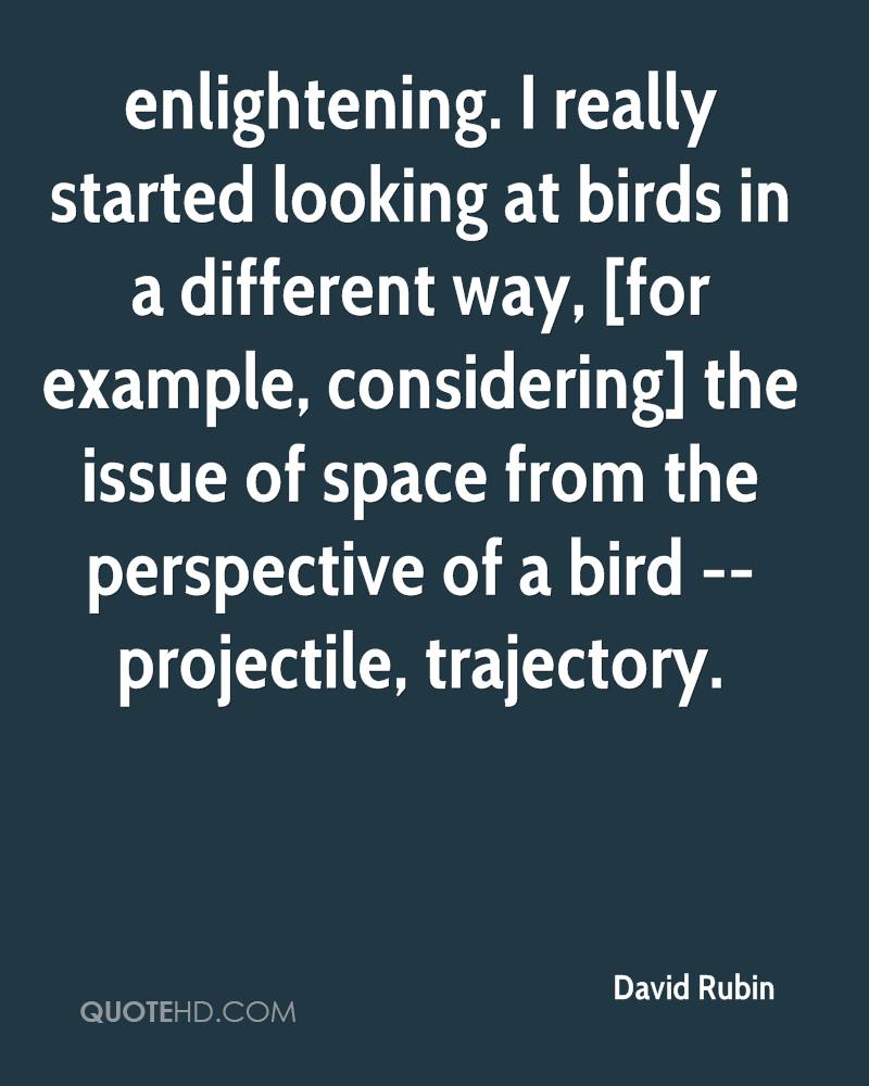 enlightening. I really started looking at birds in a different way, [for example, considering] the issue of space from the perspective of a bird -- projectile, trajectory.