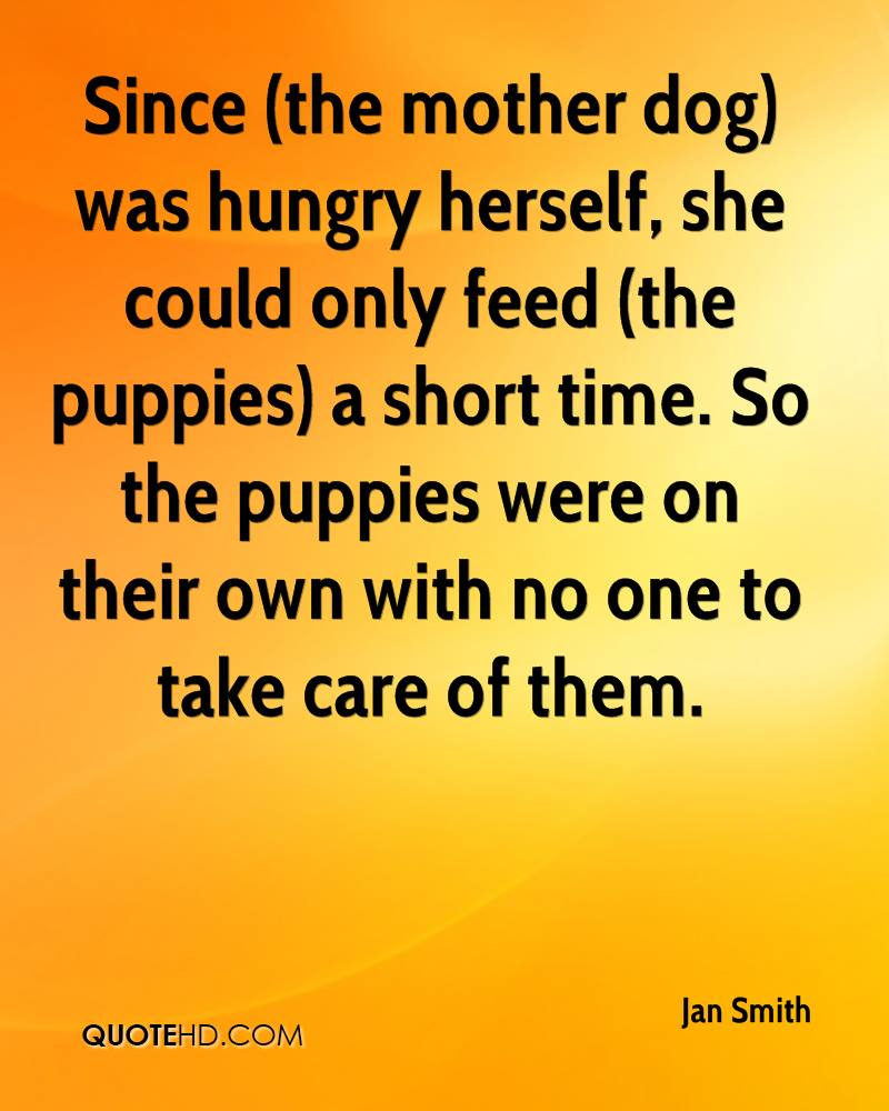 Since (the mother dog) was hungry herself, she could only feed (the puppies) a short time. So the puppies were on their own with no one to take care of them.