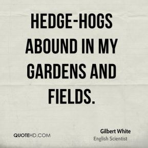 Gilbert White - Hedge-hogs abound in my gardens and fields.