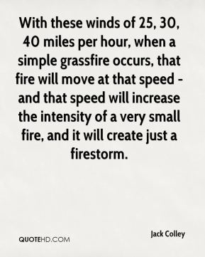 With these winds of 25, 30, 40 miles per hour, when a simple grassfire occurs, that fire will move at that speed - and that speed will increase the intensity of a very small fire, and it will create just a firestorm.