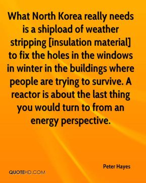 Peter Hayes  - What North Korea really needs is a shipload of weather stripping [insulation material] to fix the holes in the windows in winter in the buildings where people are trying to survive. A reactor is about the last thing you would turn to from an energy perspective.