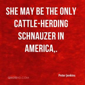 Peter Jenkins  - She may be the only cattle-herding schnauzer in America.