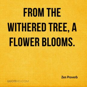 Zen Proverb  - From the withered tree, a flower blooms.