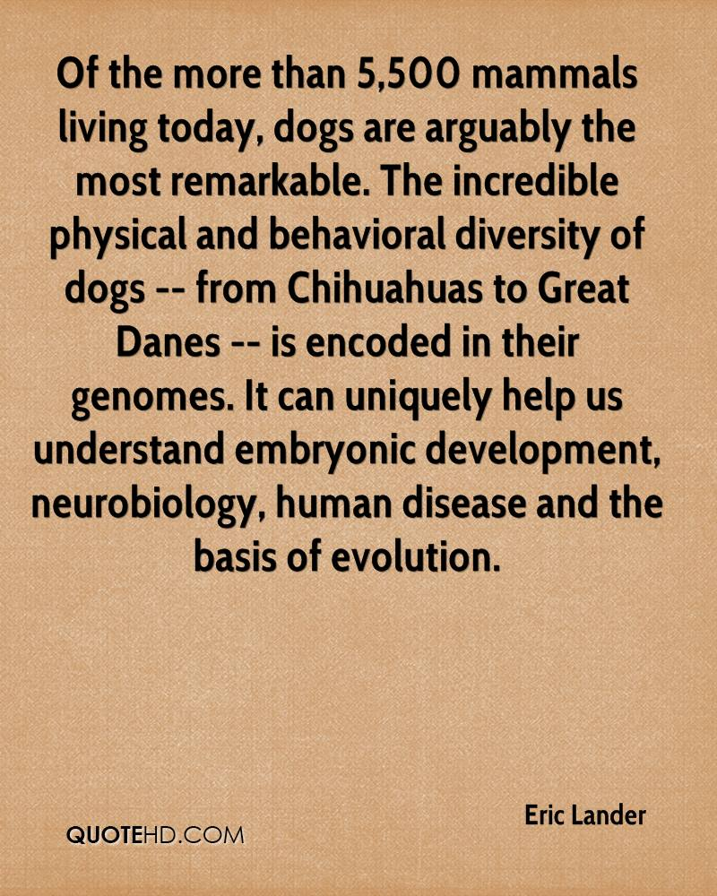 Of the more than 5,500 mammals living today, dogs are arguably the most remarkable. The incredible physical and behavioral diversity of dogs -- from Chihuahuas to Great Danes -- is encoded in their genomes. It can uniquely help us understand embryonic development, neurobiology, human disease and the basis of evolution.
