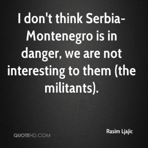 Rasim Ljajic  - I don't think Serbia-Montenegro is in danger, we are not interesting to them (the militants).