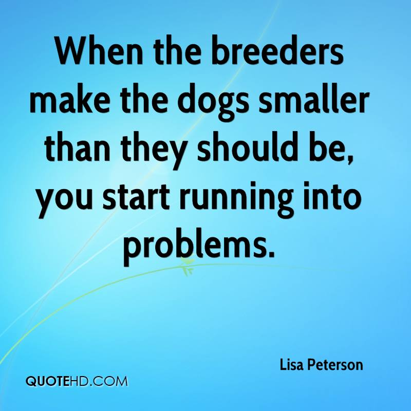 When the breeders make the dogs smaller than they should be, you start running into problems.