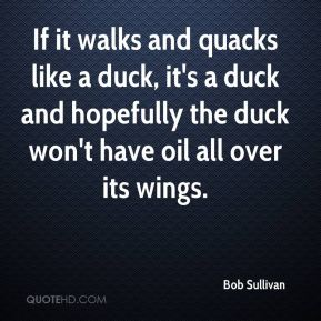 Bob Sullivan - If it walks and quacks like a duck, it's a duck and hopefully the duck won't have oil all over its wings.