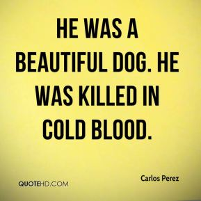 Carlos Perez - He was a beautiful dog. He was killed in cold blood.