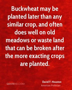Buckwheat may be planted later than any similar crop, and often does well on old meadows or waste land that can be broken after the more exacting crops are planted.
