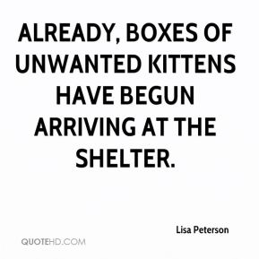 Already, boxes of unwanted kittens have begun arriving at the shelter.