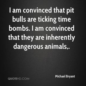 I am convinced that pit bulls are ticking time bombs. I am convinced that they are inherently dangerous animals.