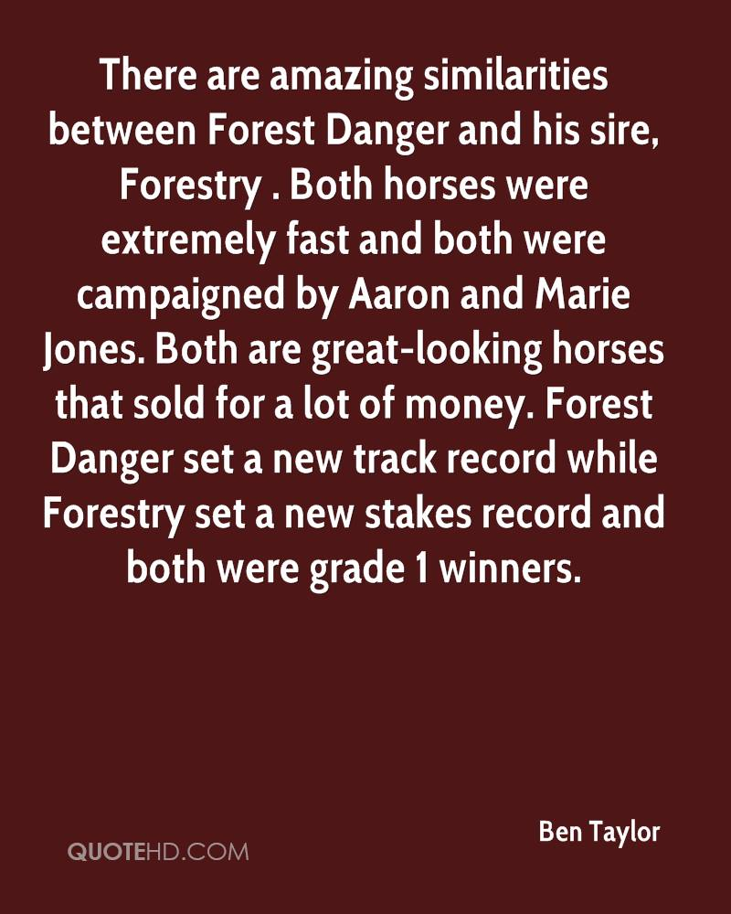 There are amazing similarities between Forest Danger and his sire, Forestry . Both horses were extremely fast and both were campaigned by Aaron and Marie Jones. Both are great-looking horses that sold for a lot of money. Forest Danger set a new track record while Forestry set a new stakes record and both were grade 1 winners.