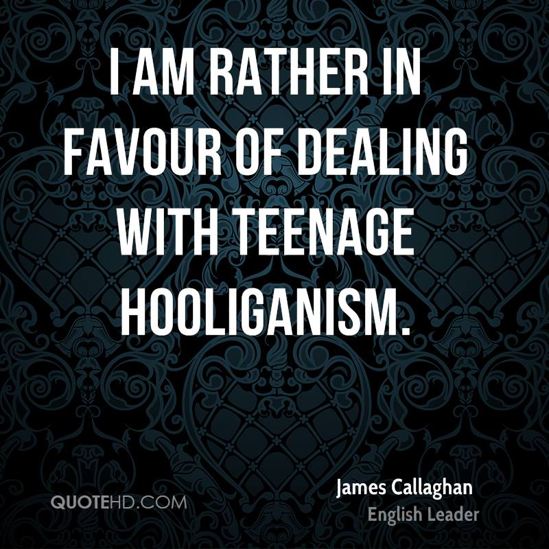 I am rather in favour of dealing with teenage hooliganism.