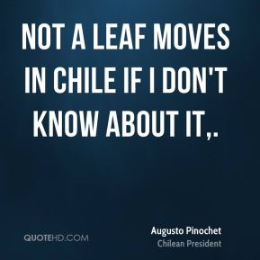 Not a leaf moves in Chile if I don't know about it.
