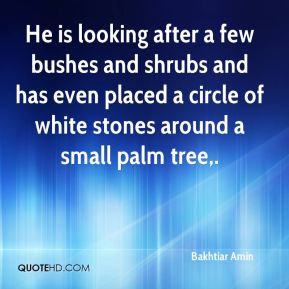 He is looking after a few bushes and shrubs and has even placed a circle of white stones around a small palm tree.