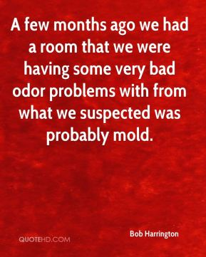 A few months ago we had a room that we were having some very bad odor problems with from what we suspected was probably mold.