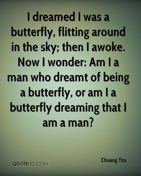 Chuang Tzu - I dreamed I was a butterfly, flitting around in the sky; then I awoke. Now I wonder: Am I a man who dreamt of being a butterfly, or am I a butterfly dreaming that I am a man?