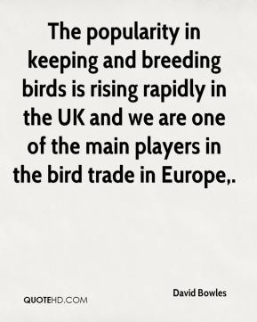 David Bowles - The popularity in keeping and breeding birds is rising rapidly in the UK and we are one of the main players in the bird trade in Europe.