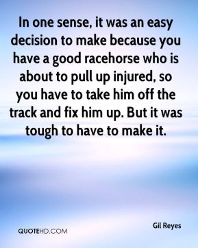 In one sense, it was an easy decision to make because you have a good racehorse who is about to pull up injured, so you have to take him off the track and fix him up. But it was tough to have to make it.