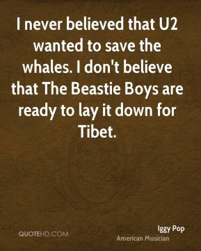 I never believed that U2 wanted to save the whales. I don't believe that The Beastie Boys are ready to lay it down for Tibet.