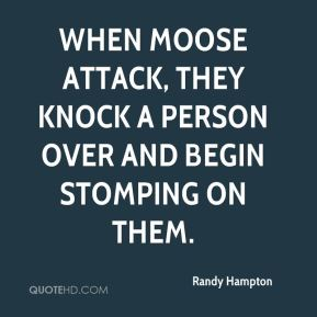 Randy Hampton  - When moose attack, they knock a person over and begin stomping on them.