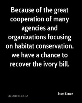 Because of the great cooperation of many agencies and organizations focusing on habitat conservation, we have a chance to recover the ivory bill.