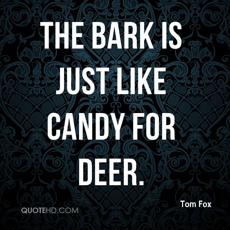 The bark is just like candy for deer.