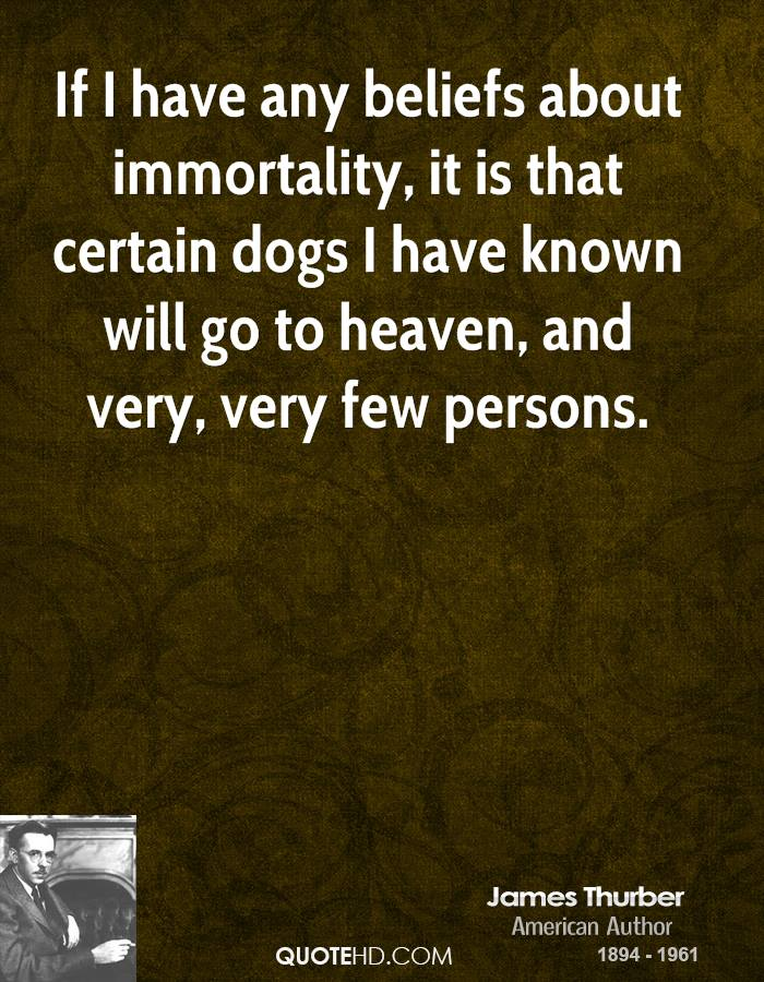 If I have any beliefs about immortality, it is that certain dogs I have known will go to heaven, and very, very few persons.
