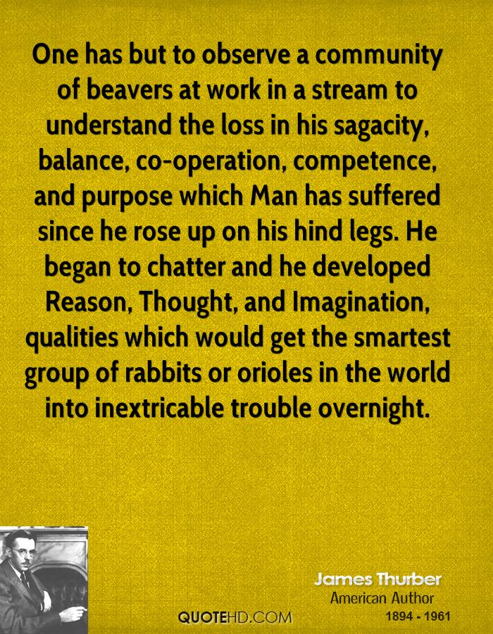 One has but to observe a community of beavers at work in a stream to understand the loss in his sagacity, balance, co-operation, competence, and purpose which Man has suffered since he rose up on his hind legs. He began to chatter and he developed Reason, Thought, and Imagination, qualities which would get the smartest group of rabbits or orioles in the world into inextricable trouble overnight.