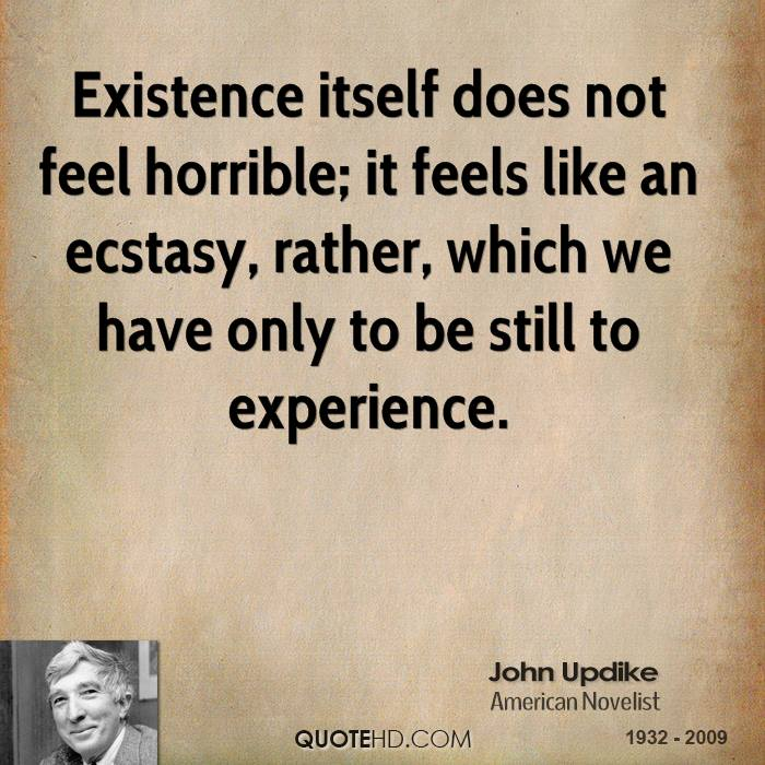 john updike experience quotes quotehd
