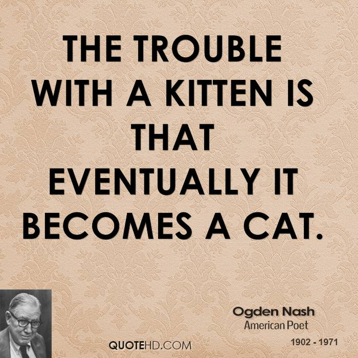 proxy - The trouble with a kitten... - Quotable Quotes