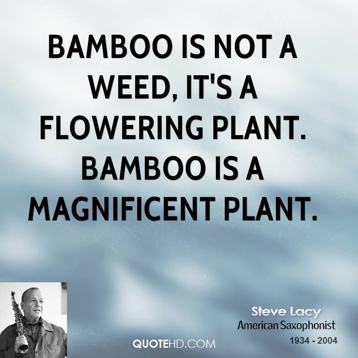 Bamboo is not a weed, it's a flowering plant. Bamboo is a magnificent plant.