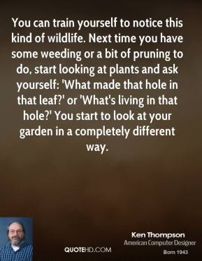 You can train yourself to notice this kind of wildlife. Next time you have some weeding or a bit of pruning to do, start looking at plants and ask yourself: 'What made that hole in that leaf?' or 'What's living in that hole?' You start to look at your garden in a completely different way.
